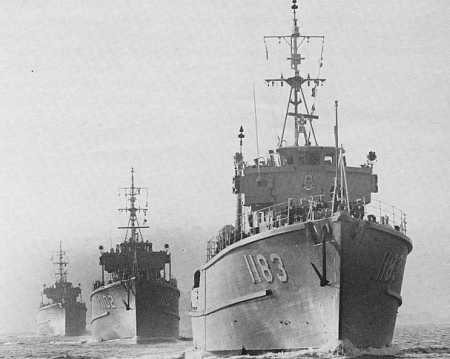 Three ships of the Squadron (r to l) Ibis (1183), Snipe (1102), Curlew (1121) (Photo: Graeme Andrews Collection)