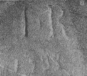 "Deterioration of the Initials ""I.R."" - photo taken 1989"