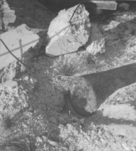 Prior to its removal and restoration, a 6-inch barrel ex-HMAS BRISBANE (I) lying partially buried amongst rubble at the former Bickley Battery site on Rottnest Island in the late 1970's. Photo: Vic Jeffery