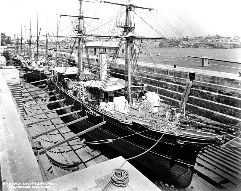 HMS Ships Torch, Ringdove and Goldfinch in the Sutherland Dock in 1897